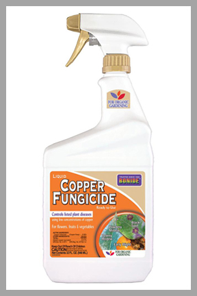 Liquid Copper Fungicide 32 Fl. Oz.